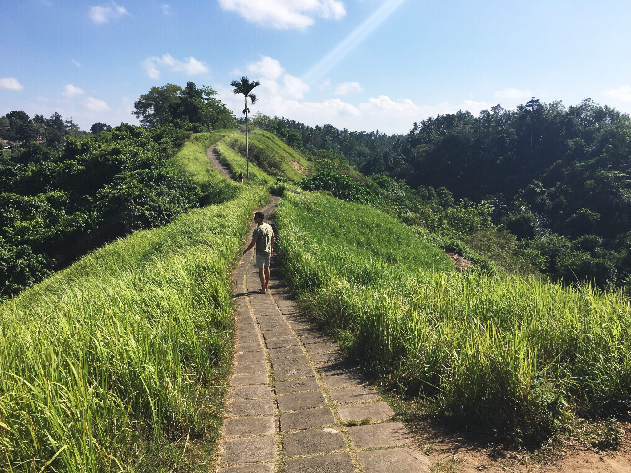De Campuhan Ridge Walk, leuke wandeling in Ubud centrum.